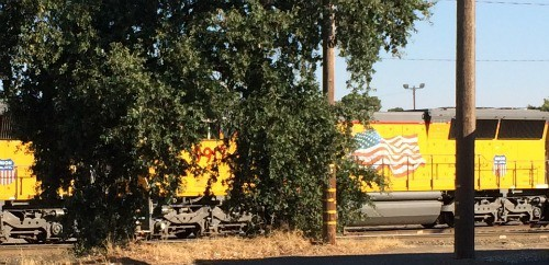 I love to walk around Vernon Downtown and see the trains