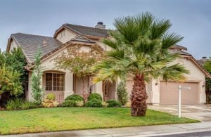 California Palm Tree With This Lovely West Roseville Home Via Kaye Swain Real Estate Agent Who