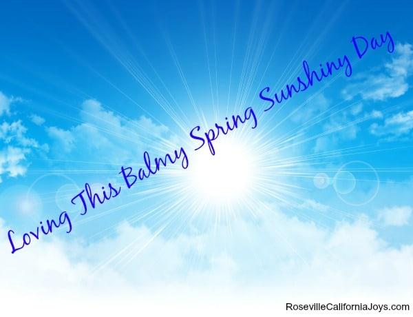 Spring Sunshine in Roseville California 95747