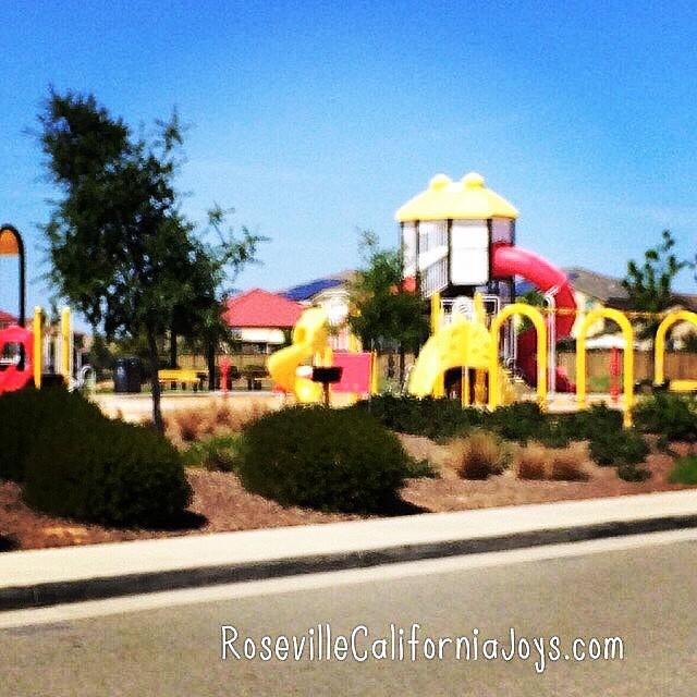 Lovely Westpark park in Roseville Ca photo by real estate agent Kaye Swain