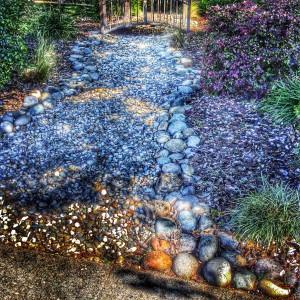 Lovely drought friendly water wise garden landscape plan in west roseville via Kaye Swain REALTOR