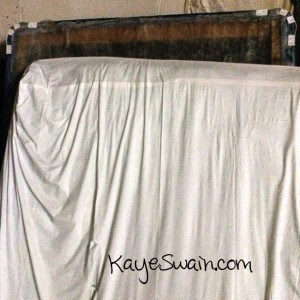 Mattresses and Bedsprings And no space oh my in Roseville CA with Kaye Swain
