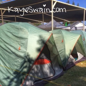 Boy scouts were a vital part of Berryfest 2015 at the Placer County Fair site in Roseville CA via real estate agent Kaye Swain
