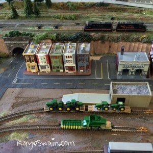Kaye Swain REALTOR loved seeing the model trains at the Berryfest 2015 in Roseville CA