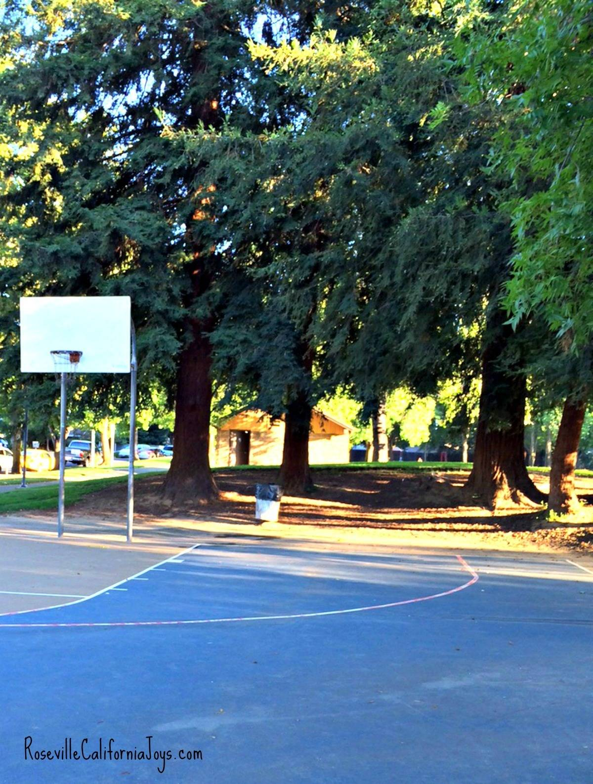 Cresthaven Park Roseville CA by Kaye Swain real estate agent blogger showing basketball hoop 1200