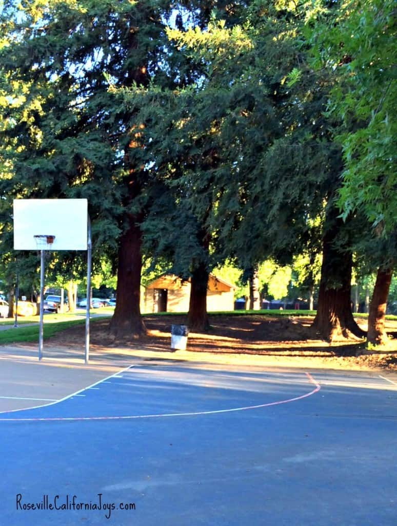 Cresthaven Park Roseville CA by Kaye Swain real estate agent blogger showing basketball hoop