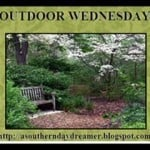 Kaye Swain Roseville CA real estate agent blogger visits A Southern Dreamer for Outdoor Wednesday