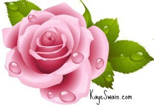 Kaye-Swain-real-estate-agent-blogger-in-Roseville-CA-near-Sacramento-pink-rose-url