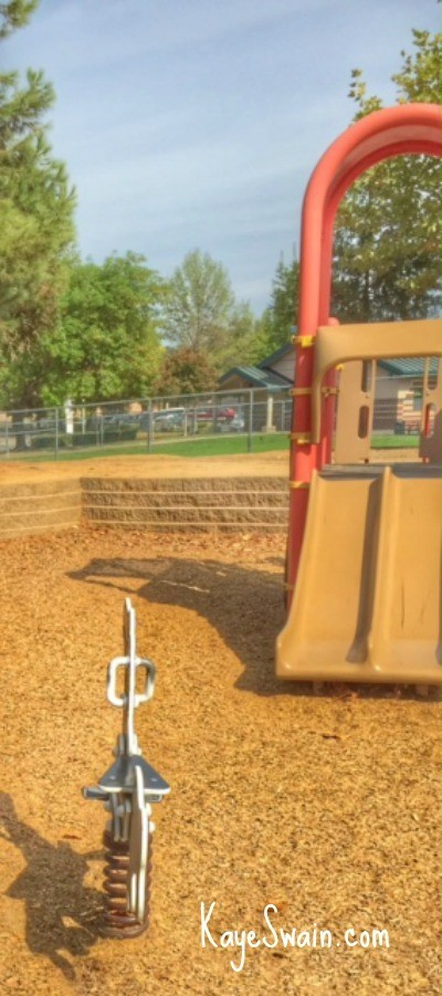 Maidu Park Roseville CA main playground via Kaye Swain real estate agent blog