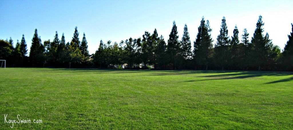 Plenty of room for plenty of kids fun at Elliott Park in Roseville CA via Kaye Swain REALTOR 1200