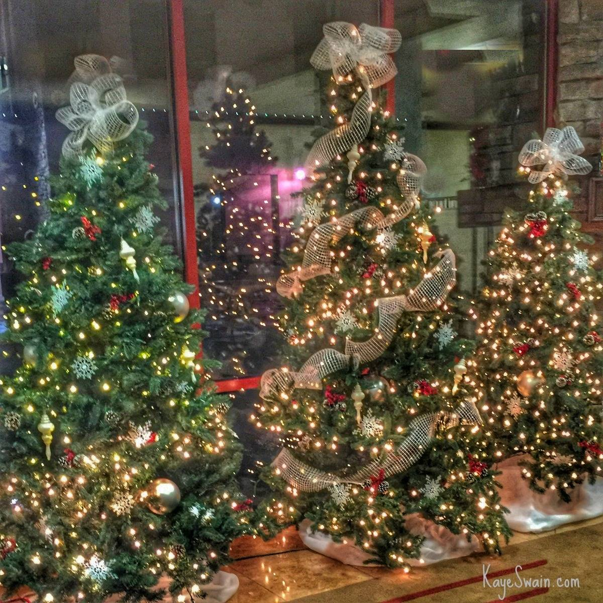 Kaye Swain Roseville CA and Granite Bay CA real estate agent blogger sharing Bayside Church Christmas trees