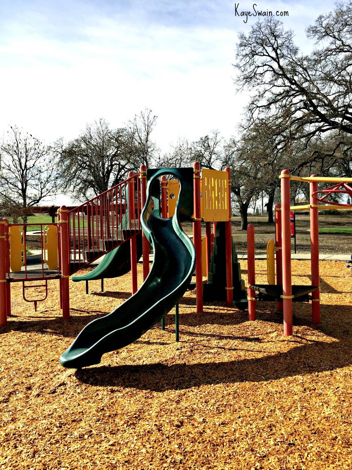 Hall Park in Roseville CA via Kaye Swain real estate agent blogger in Sacramento and Roseville