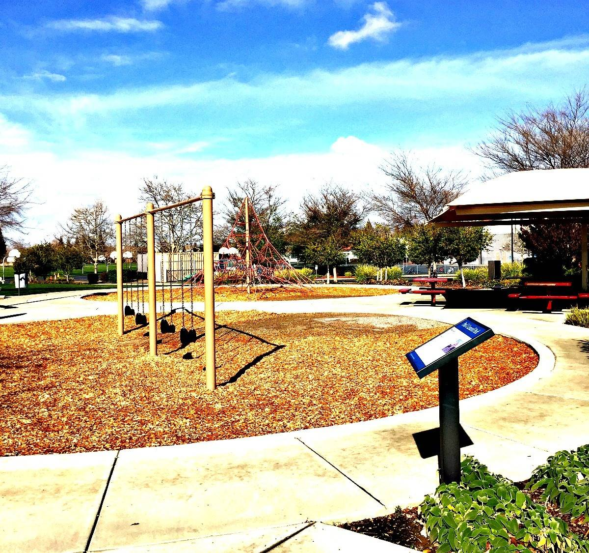 Kaye Swain Sacramento Roseville real estate agent sharing Lunardi Park with swings and climbing equipment