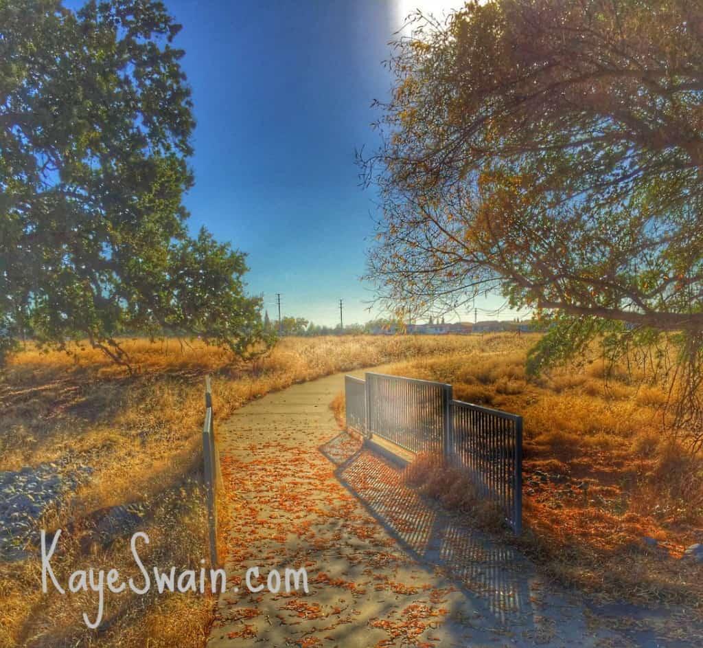Kaye Swain blogger REALTOR sharing Roseville CA Veterans Memorial Park Parks walking trail connector
