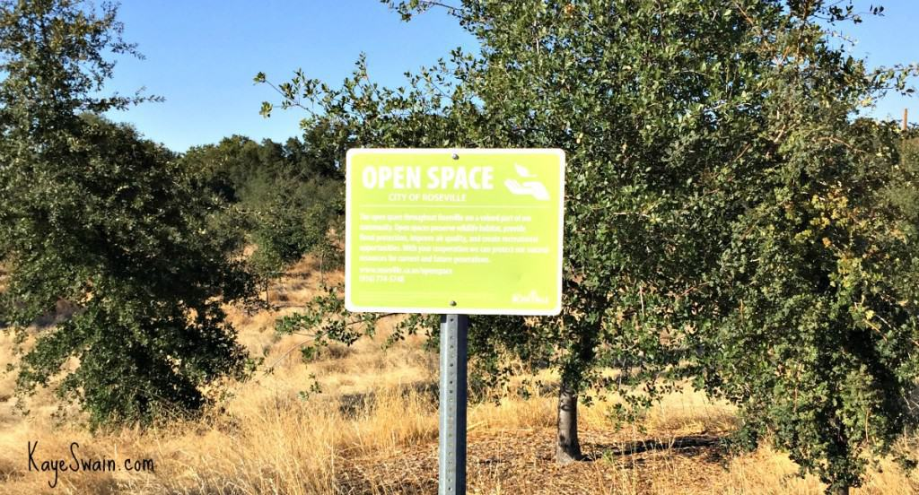 Kaye Swain blogger REALTOR sharing Roseville CA Veterans Memorial and hughes Park open spaces