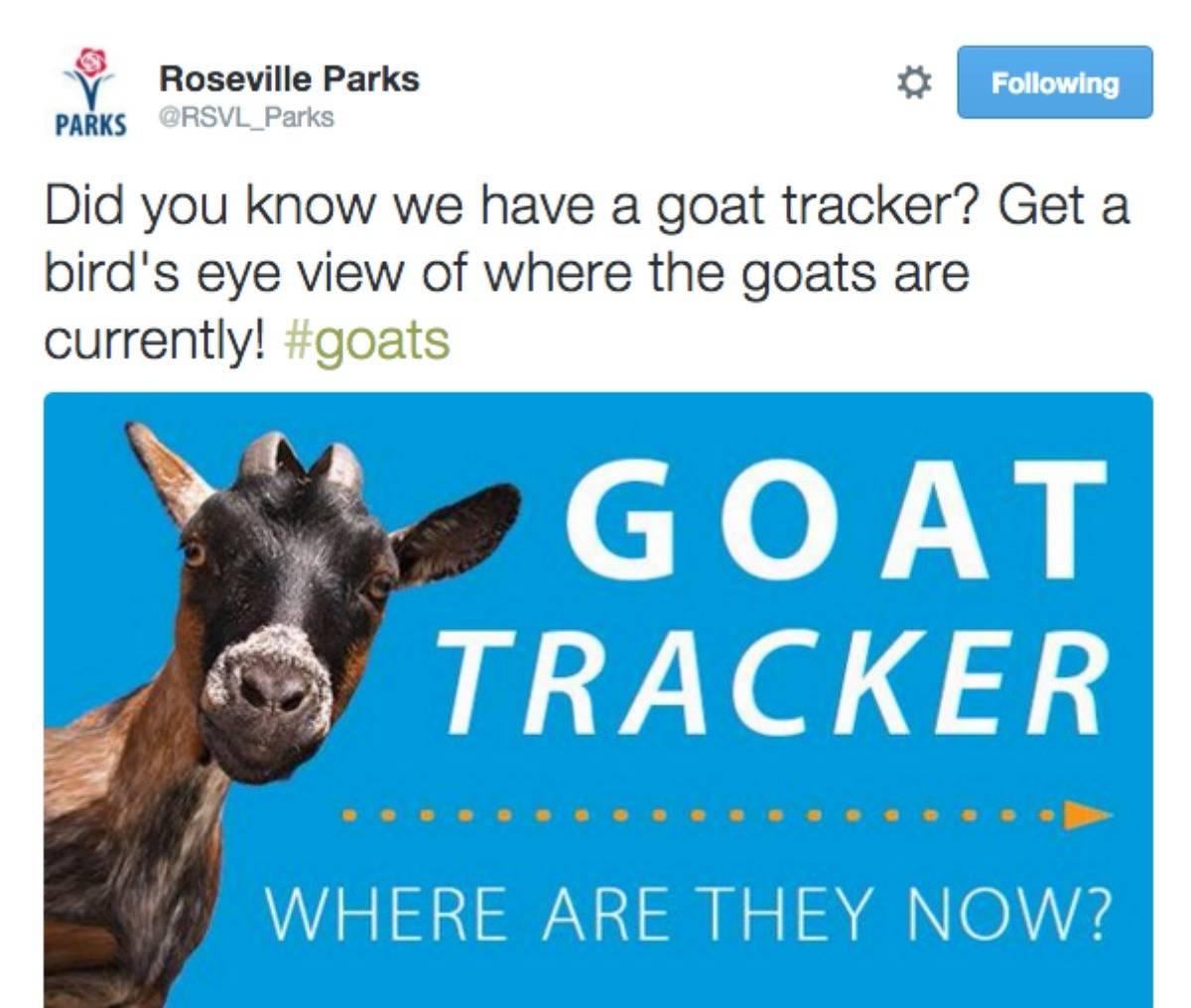 Real estate Agent Blogger Kaye Swain shares Roseville CA Parks tweet about Roseville goats tracker