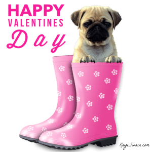 Kaye Swain Blogger REALTOR Roseville Sacramento Happy Valentine Day Pink Saturday Dog 1200