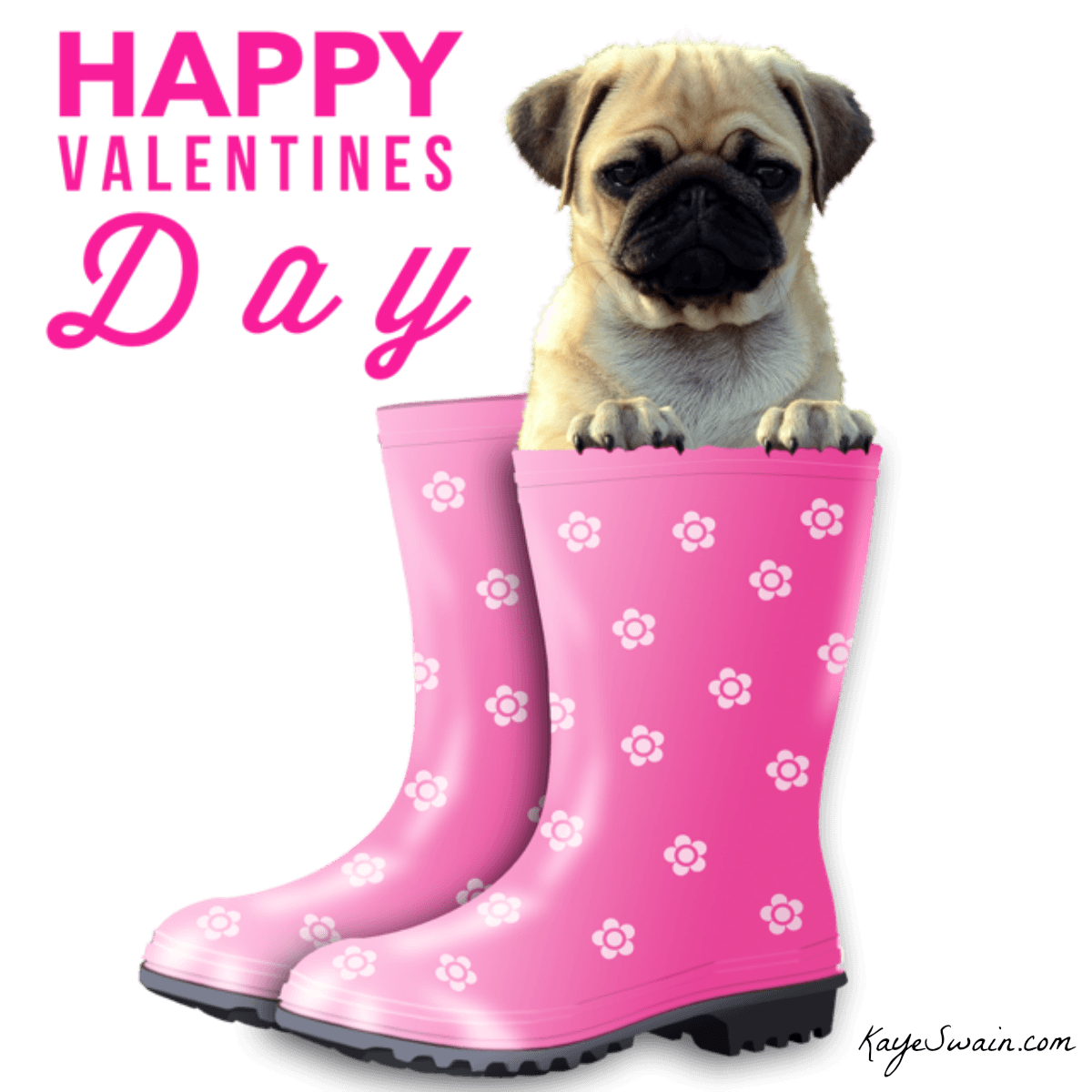 Valentines day ideas for at home and out and about - Valentines day pictures with puppies ...
