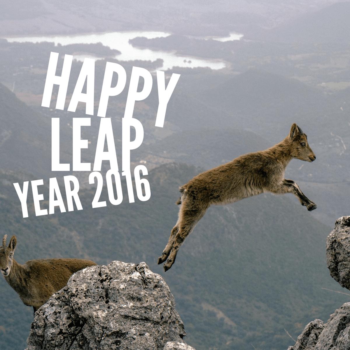 Kaye Swain Roseville CA REALTOR blogger says happy leap year 2016