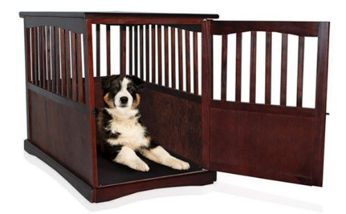 Buy dog bed crates when find lost dogs online