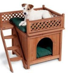 Cute dog bed house when find a small puppy dog