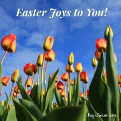 Kaye Swain Christian blog real estate agent with Easter Joys in Roseville Sacramento CA
