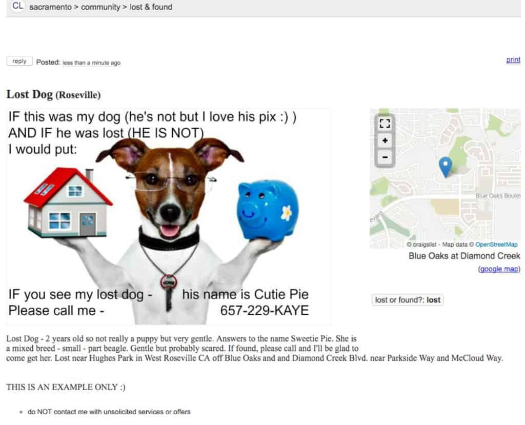 Kaye Swain Roseville Sacramento REALTOR sharing examples on Craigslist to find a lost pet small dog