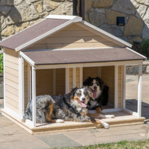 buy dog house bring lost dogs home