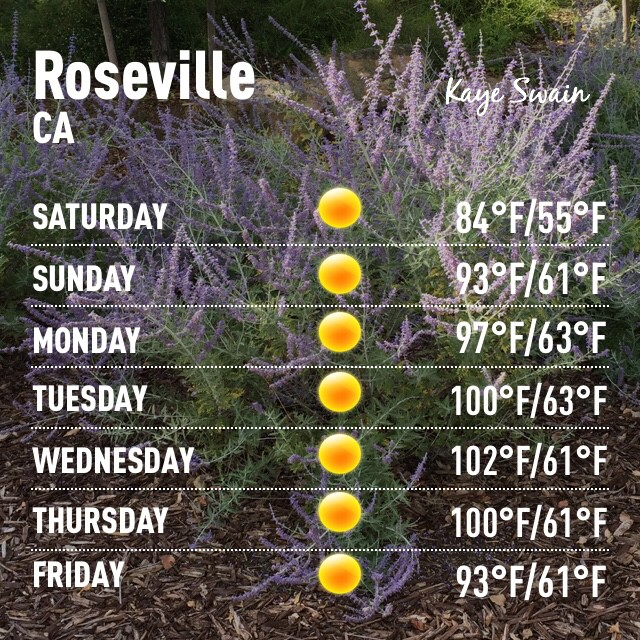 Kaye Swain Roseville real estate agent shares weather Roseville 95747 time to beat the heat