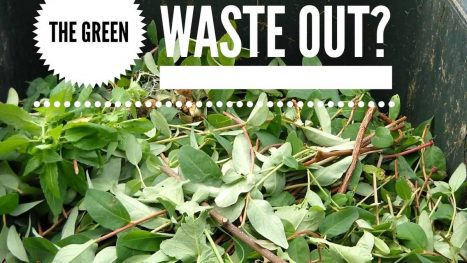 Kaye Swain real estate agent Roseville CA shares Green Waste residential trash collection pick up tips more