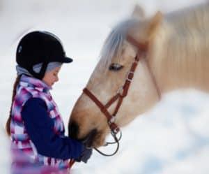 Kaye-Swain-Sacramento-Roseville-Real-Estate-Agent-shares-horse-area-resources
