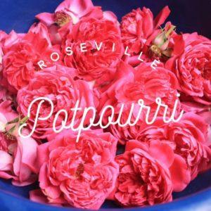 Kaye Swain Roseville Real Estate Agent shares rose potpourri