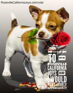 KCRA A-List Sacramento City Voter Vote Roseville California Joys Kaye Swain best local blogger THANK YOU