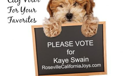 Kaye Swain Roseville California Joys blogger REALTOR is a 2018 Nominee for Sacramento City Voter A List