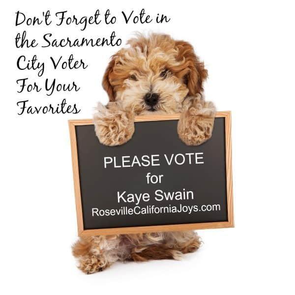 Kaye Swain Roseville California Joys blogger REALTOR is a 2018 Nominee for Sacramento City Voter A List