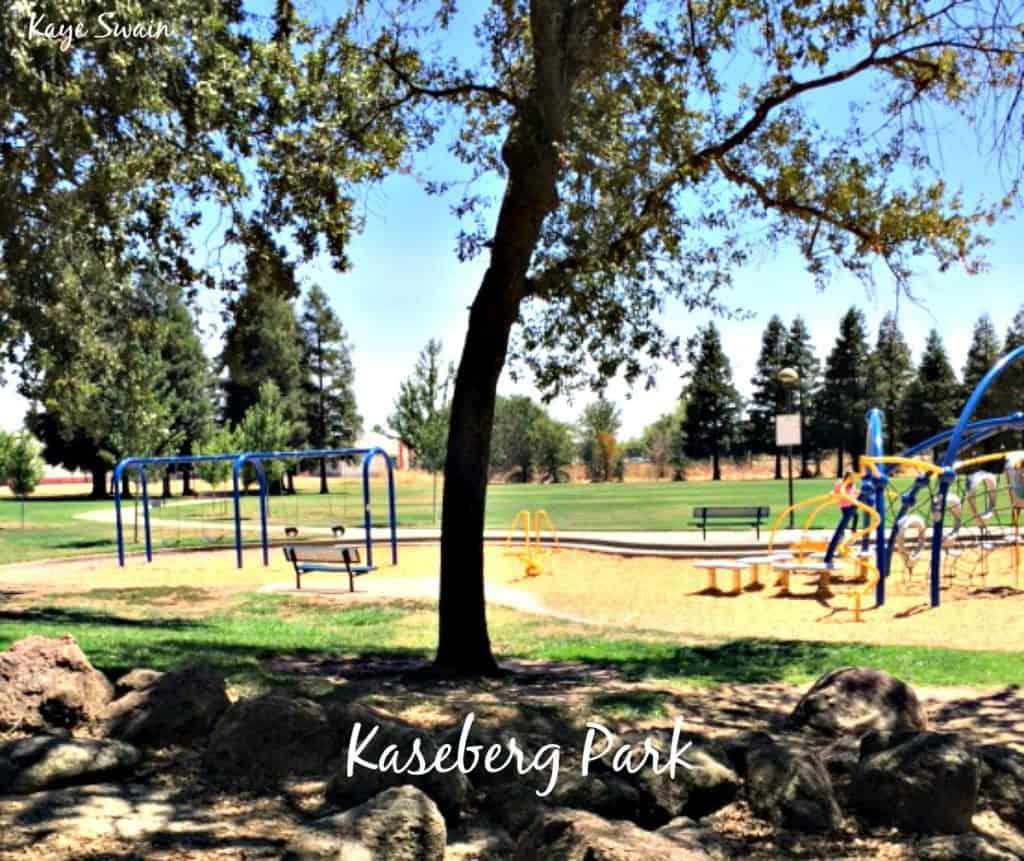 Kaye Swain Roseville Real Estate Agent shares Kaseberg Park Playground Swings shade Roseville Parks
