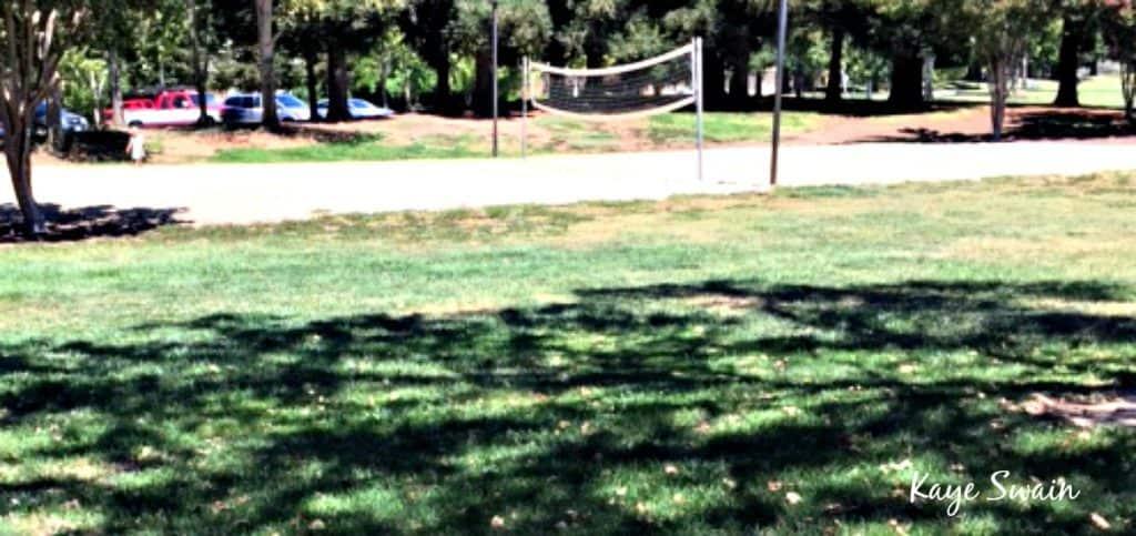 Kaye Swain Roseville Real Estate Agent shares Kaseberg Park Sand Volleyball Roseville Parks