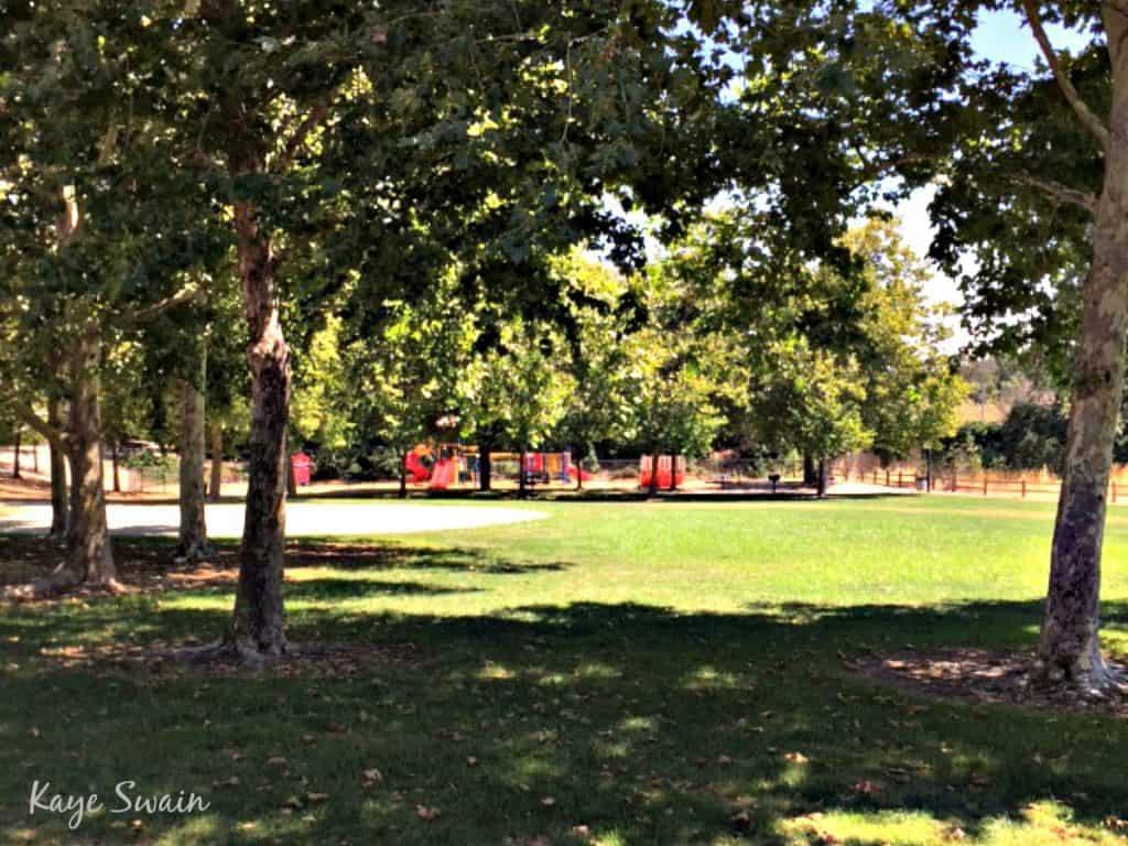 Kaye Swain Roseville Real Estate Agent shares Mistywood Park Roseville Parks