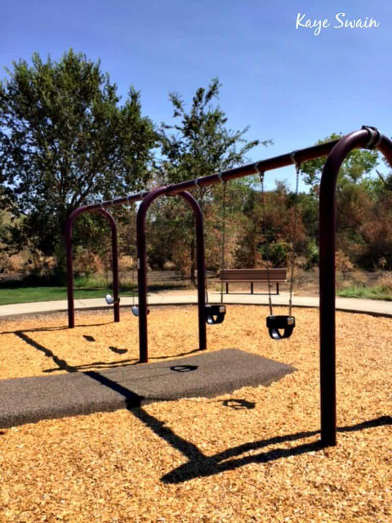 Kaye Swain Roseville Real Estate Agent shares Taylor Park Swings Roseville Parks