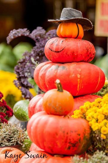 Roseville Real Estate Agent Kaye Swain sharing pumpkin joys
