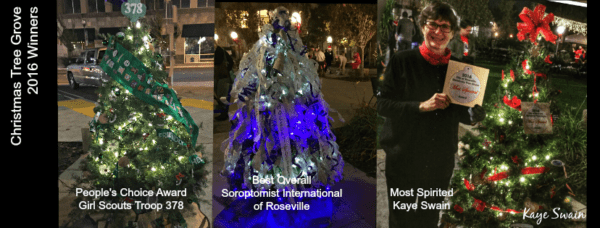 Christmas Joys Kaye Swain Roseville Real Estate Agent Soroptomist International Girl Scouts Troop 378 Christmas Tree Grove Winners 2016