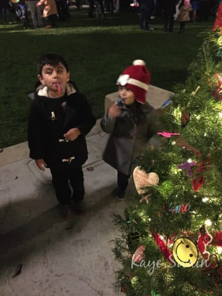 Kaye Swain Roseville Real Estate Agent sharing adorables at Christmas Tree Grove Event