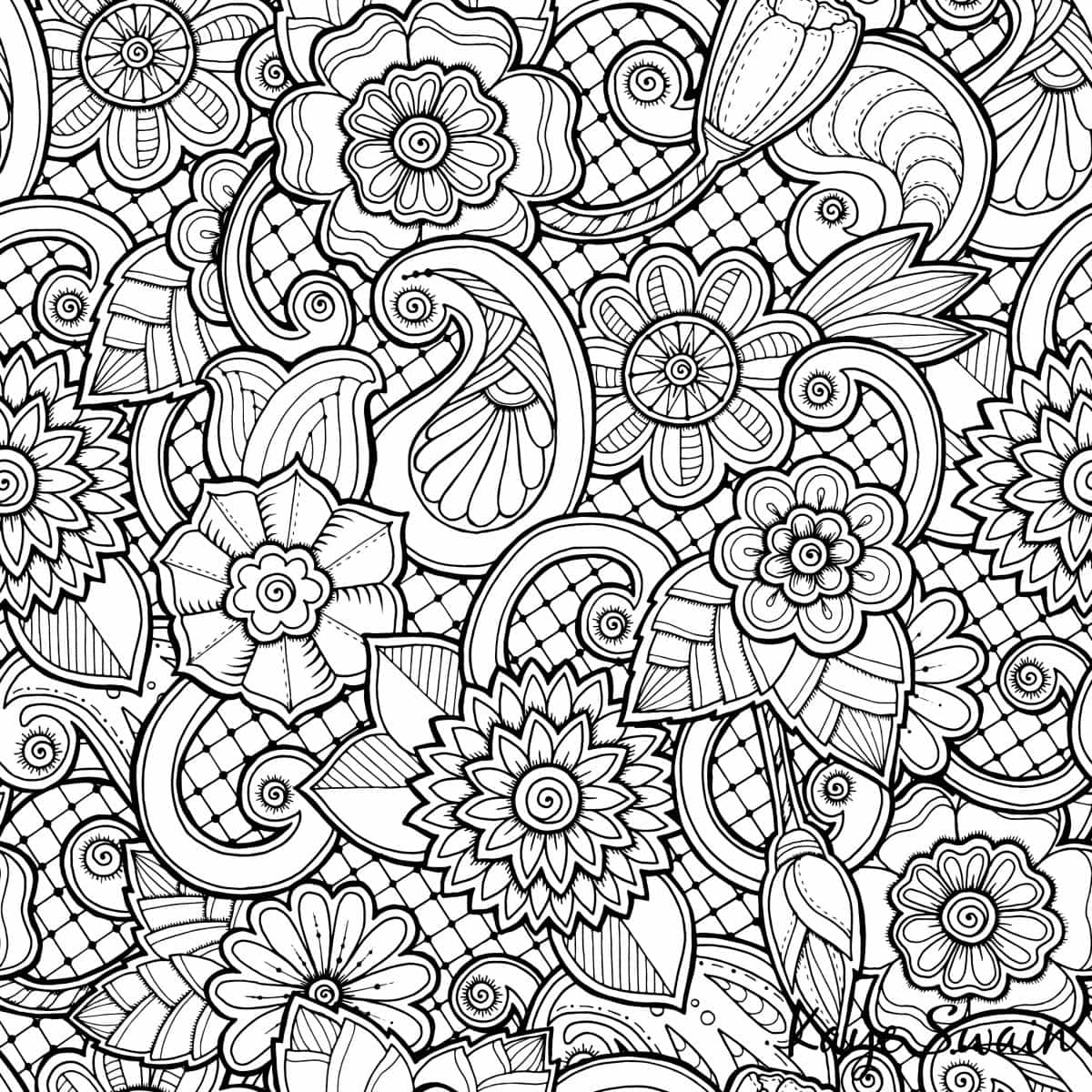 Coloring book real estate - Roseville Real Estate Agent Kaye Swain Sharing Spring Coloring Page Flowers Jpg