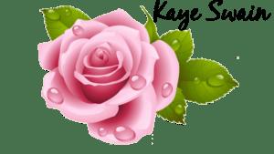 Kaye Swain Roseville Real Estate Agent Blogger