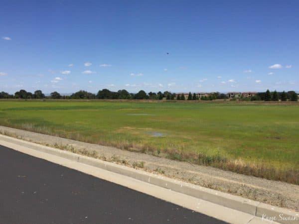 Roseville Pleasant Grove Wastewater Treatment Plan Tour 2017 via Kaye Swain 169