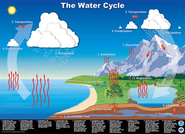 Water Cycle-credit NWS released into the public domain by National Weather Service NWS via Kaye Swain Roseville REALTOR