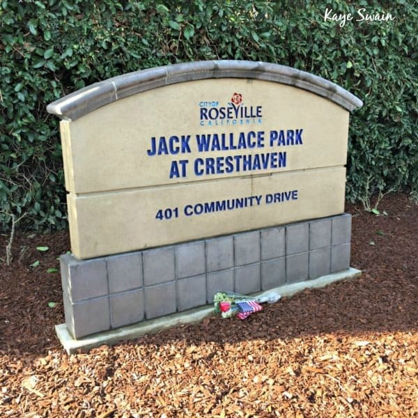 Kaye-Swain-Roseville-Real-Estate-Agent-shares-Jack-Wallace-Park-At-Cresthaven-600