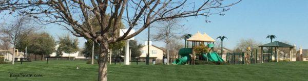 Family Friendly Movie Fun Mel Hamel Park Blue Oaks Neighborhood Kaye Swain Roseville REALTOR