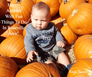Fall fun things do Roseville area fb