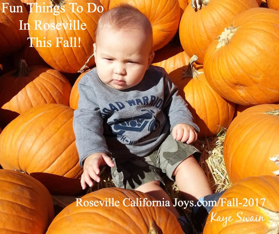 Pumpkin Patches fall fun things do Roseville CA fx fb